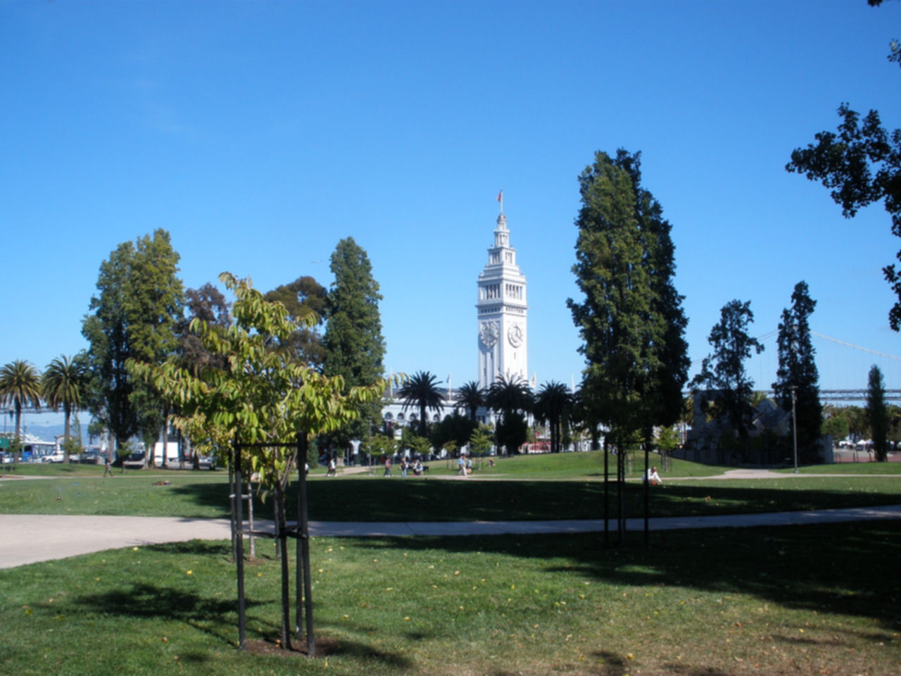 Ferry Building from Sue Bierman Park