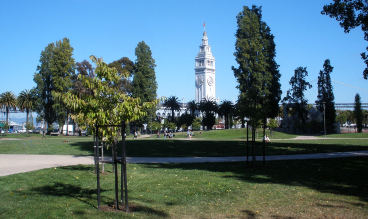 Sue Bierman Park and Ferry Building